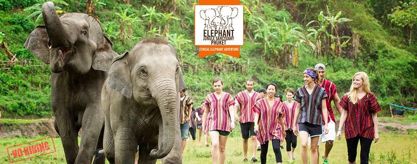 Santuario de elefantes en Phuket